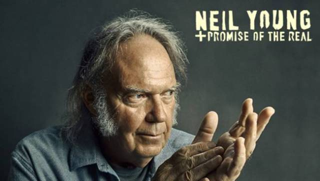 neil young3