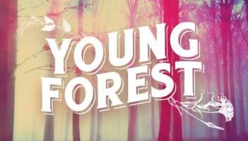 Young Forest prepara nuevo disco